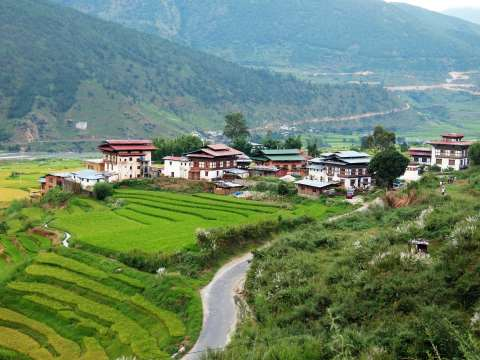 Punakha Valley magic